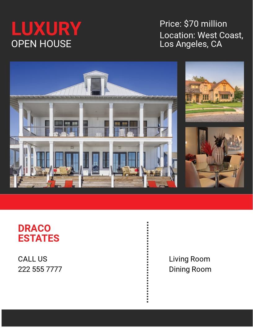 Luxury Open House Flyer Template.jpe