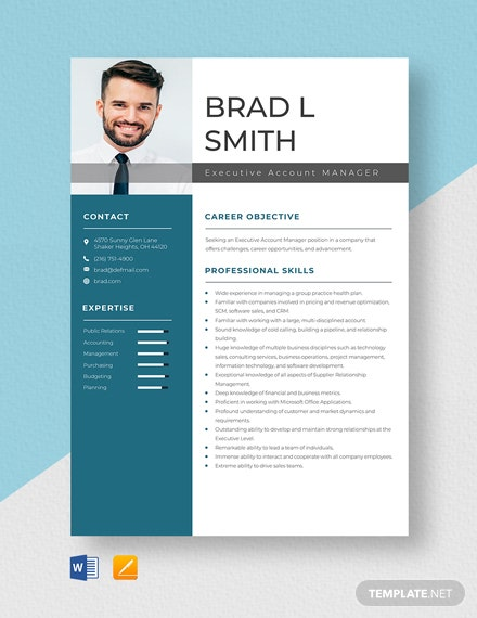 Executive Account Manager Resume Template