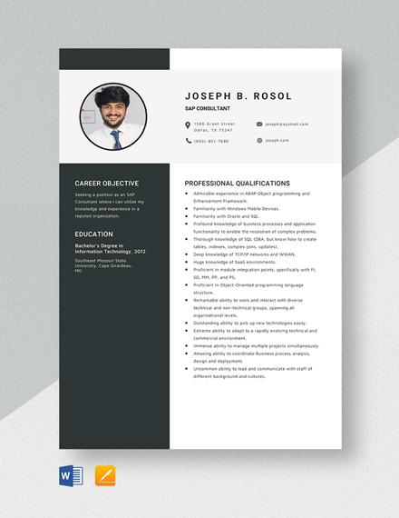 SAP Consultant Resume Template