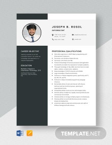 SAP Consultant Resume Template