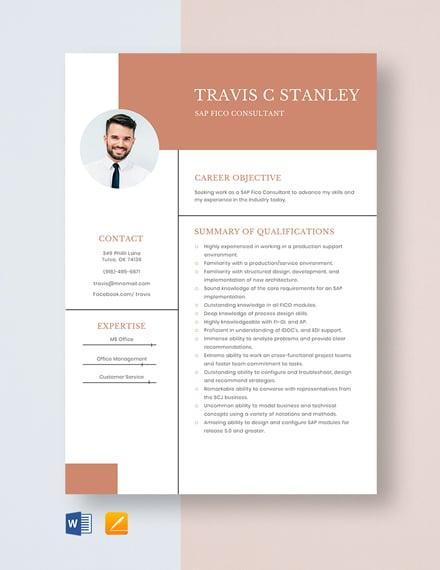 SAP Fico Consultant Resume Template