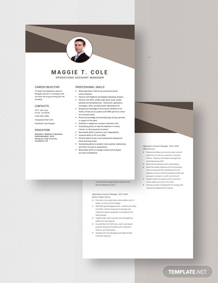 Operations Account Manager Resume Download