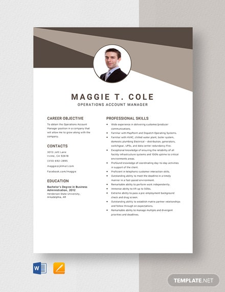Operations Account Manager Resume