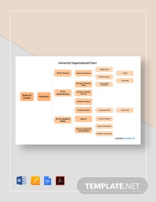 Free Sample University Organizational Chart Template
