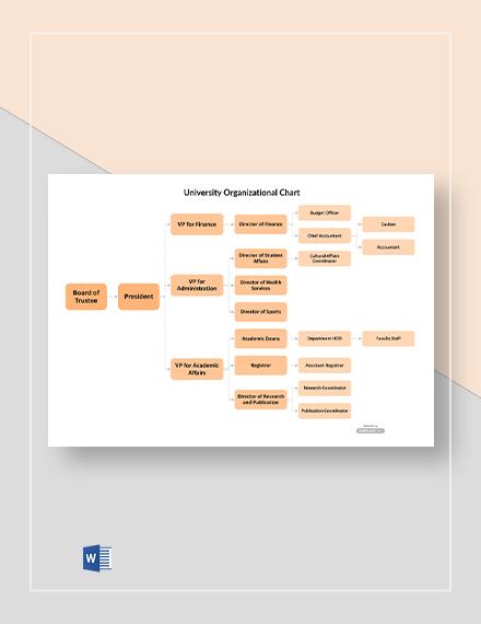 Free Sample University Organizational Chart Template