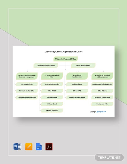 Free University Office Organizational Chart Template
