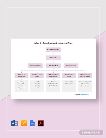 Free University Administrative Organizational Chart Template