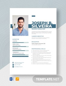 Reading Consultant Resume Template