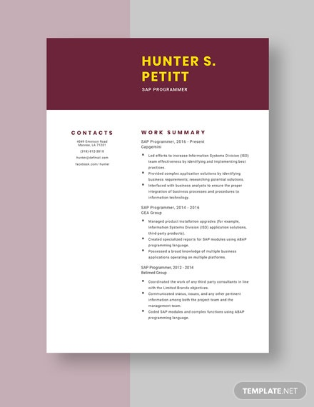 sap programmer resumecv template  word  apple pages