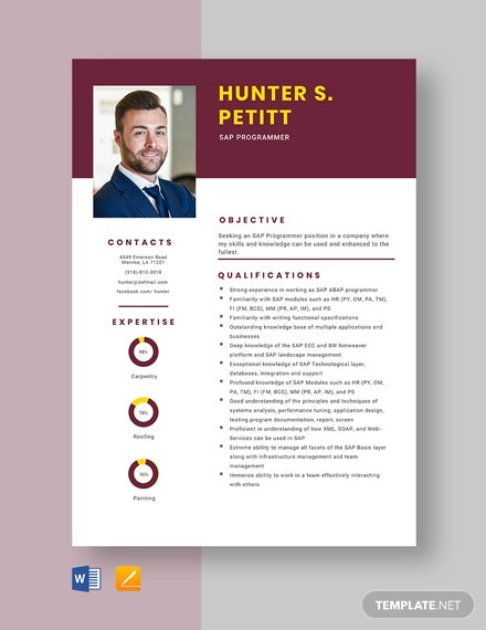 SAP Programmer Resume Template