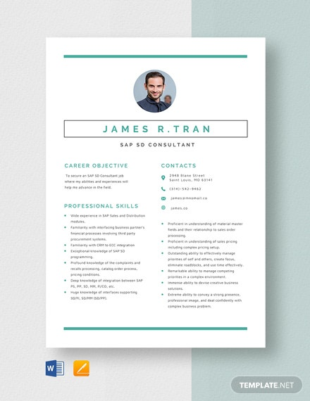 SAP SD Consultant Resume Template