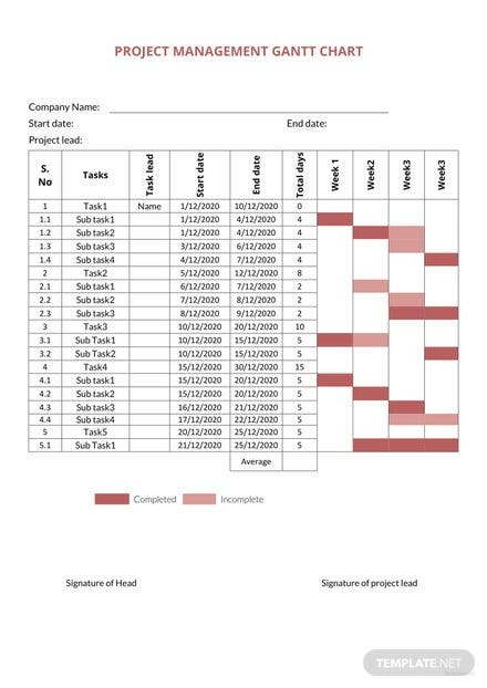 Project Management Gantt Chart Template