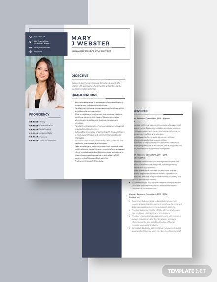 Human Resource Consultant Resume Download