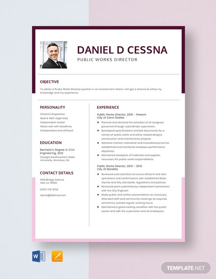 Public Works Director Resume Template