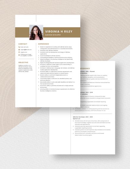 Qlikview Developer Resume  Download