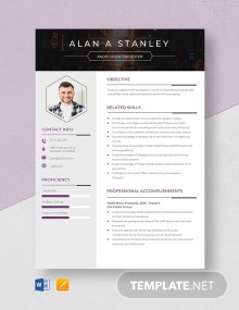 Radio Show Producer Resume Template