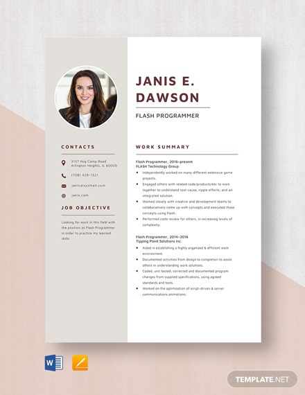 Flash Programmer Resume Template