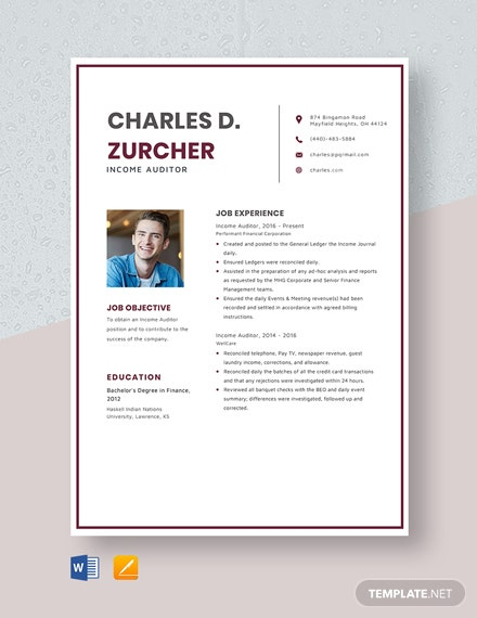 Income Auditor Resume Template