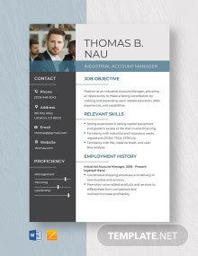 Industrial Account Manager Resume Template