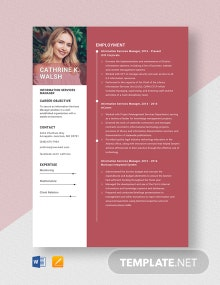 Information Services Manager Resume Template