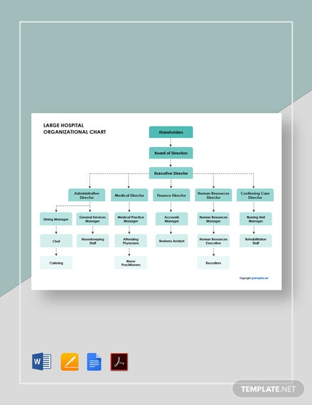 Free Large Hospital Organizational Chart Template