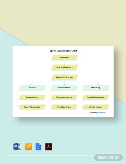 Free Sample Sports Organizational Chart Template