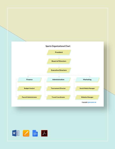 Free Sample Sports Organizational Chart Template