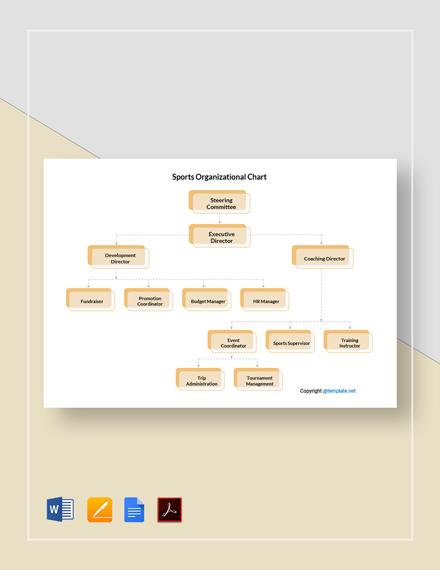 Sports Organizational Chart Template