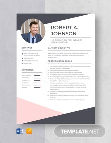 Information Technology Coordinator Resume Template