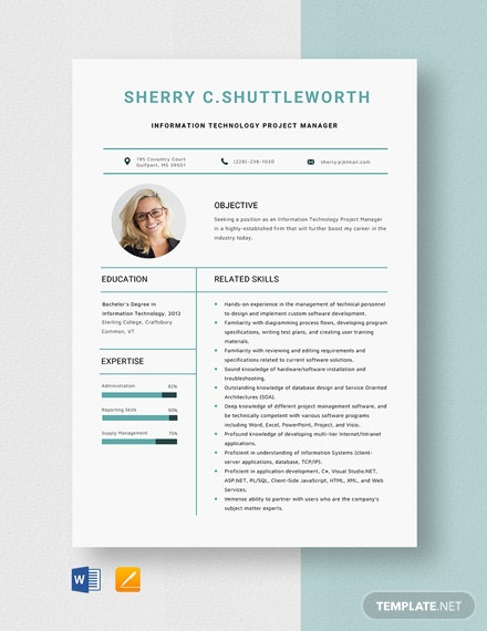 Information Technology Project Manager Resume Template