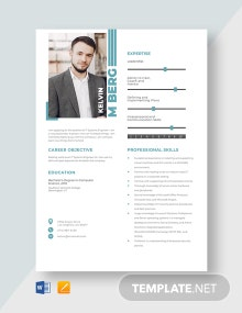 IT Systems Engineer Resume Template