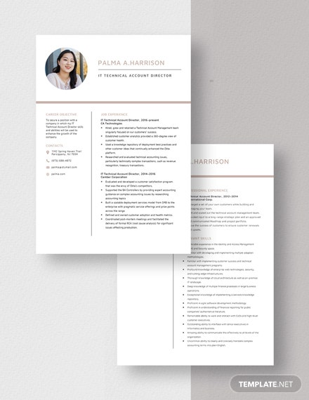 IT Technical Account Director Resume Download