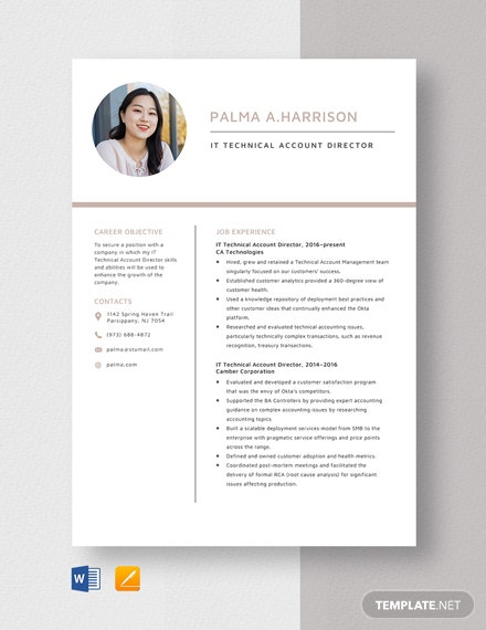 IT Technical Account Director Resume