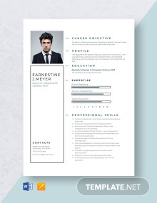 Quality Assurance Consultant Resume Template