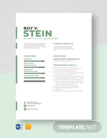 Quantitative Developer Resume Template
