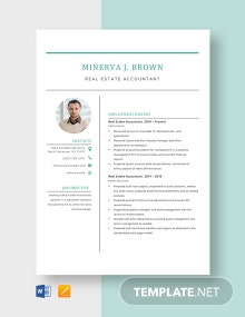 Real Estate Accountant Resume Template