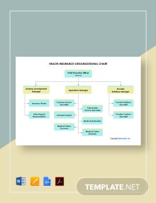 Free Health Insurance Organizational Chart Template