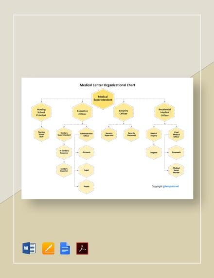 Medical Center Organizational Chart