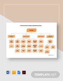 Free Pharmaceutical Company Organizational Chart Template