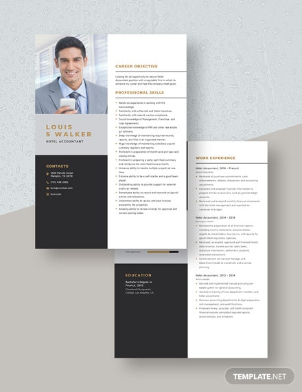 Hotel Accountant Resume Download