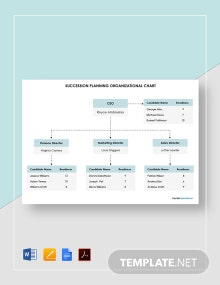 Sample Succession Planning Organizational Chart Template