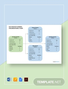 Succession Planning Organizational Chart Template
