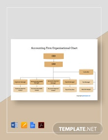 Free Sample Accounting Firm Organizational Chart Template