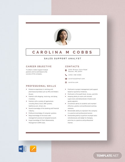 Sales Support Analyst Resume Template