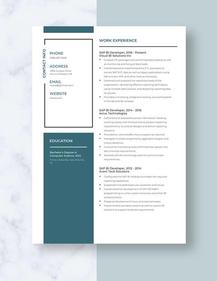 SAP BI Developer Resume Template