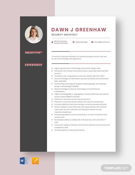 Security Architect Resume Template