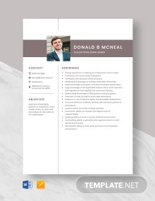 Collections Team Leader Resume Template
