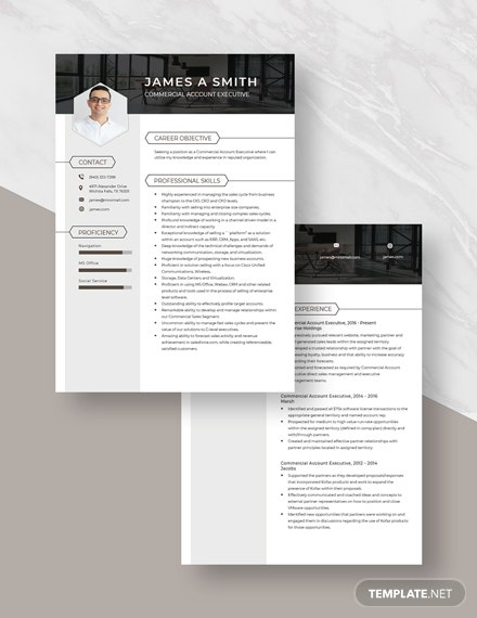 Commercial Account Executive Resume Download