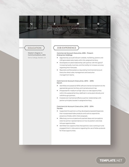 Commercial Account Executive Resume Template