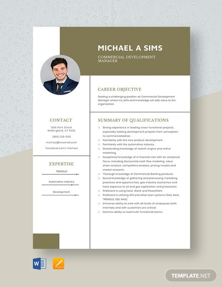Commercial Development Manager Resume Template